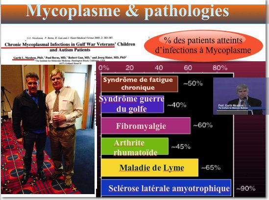 Conference Maladie de Lyme &amp&#x3B; Co-infection - Toulouse