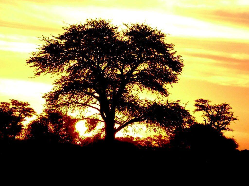 et toujours de beaux coucher de soleil....