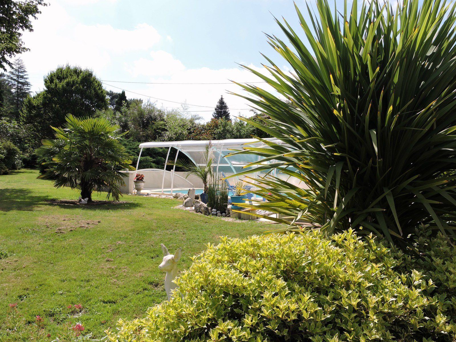 La piscine est prête pour les enfants qui reviennent à la maison pour l'été ! Nous avons ouvert le dome pour faciliter les plongeons des coquins !