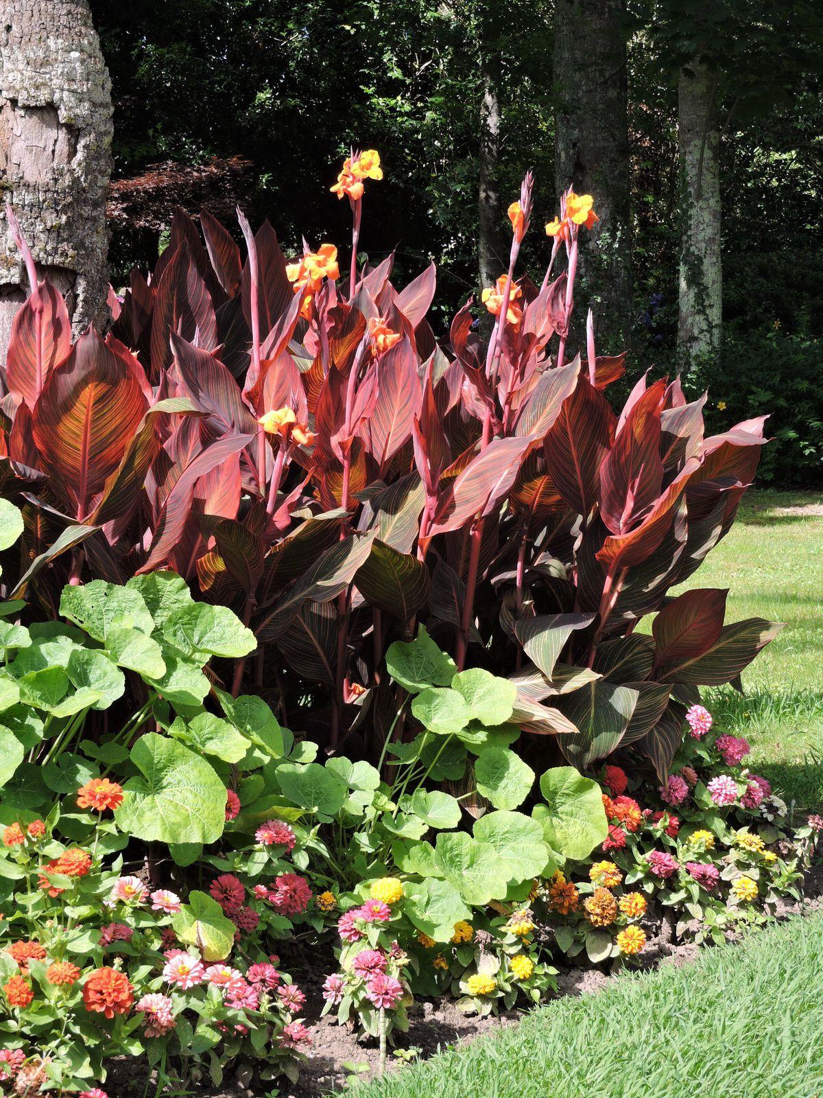 Les massifs de fleurs sont superbes . On se promène à l'ombre des grands arbres .On se repose sur les transats près des bassins et des fontaines ...
