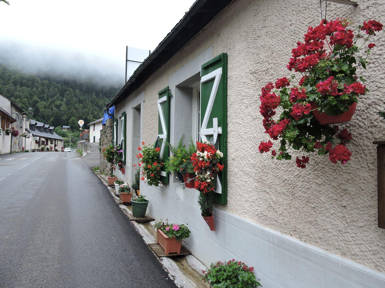 Gabas est un petit village paisible situé sur la route qui mène à la frontière espagnole juste au dessus de Laruns . Il y a un petit restaurant de famille, je l'ai toujours connu ...on y mange bien , ce n'est pas cher , à la cuisine il y a toujours la patronne Madame Turon , 92 ans aidée de ses belles filles ! J'ai toujours vu des patous à l'entrée sur le perron ,deux beaux gros toutous qui regardent passer les voitures ! Les petites maisons sont bien fleuries elles sont posées de chaque côté de la route !