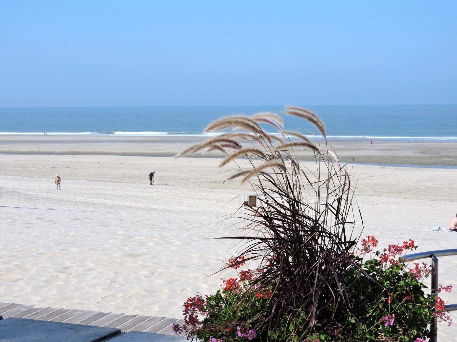 La plage de sable fin est magnifique ! Tout petit au fond perdu au milieu de l'océan il y a le phare de Cordouan ....