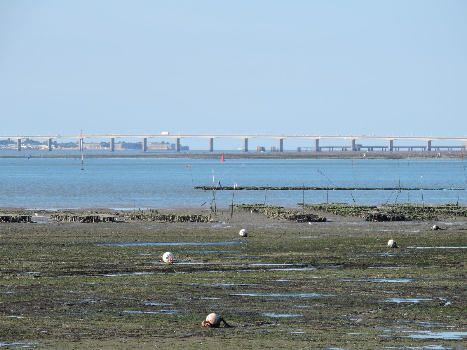 Roces les Bains la Tremblade avec ces jolis bateaux posés sur le rond point .Depuis Ronce Les Bains on voit Oléron ...et le pont .