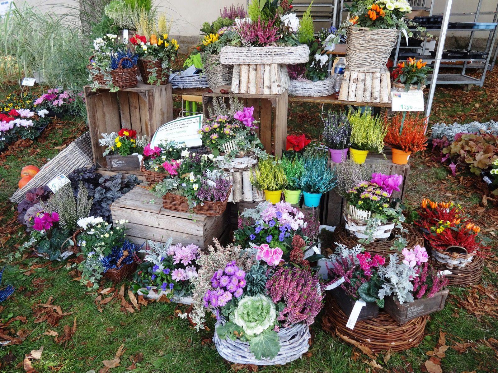 Nancy jardin extraordinaire saveurs d 39 automne le for Le jardin extraordinaire 09