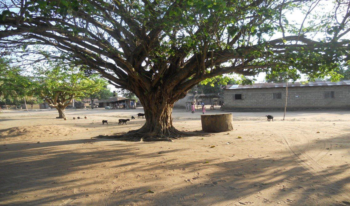 De l'eau pour le village de Kodzé au Togo