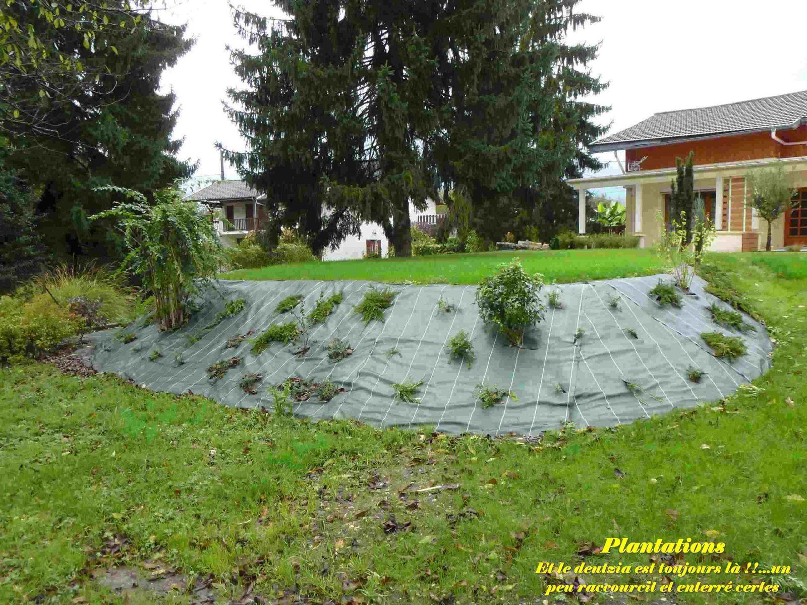 Cr ation d 39 un jardin paysager ricaud paysage - Creation de jardin paysager ...