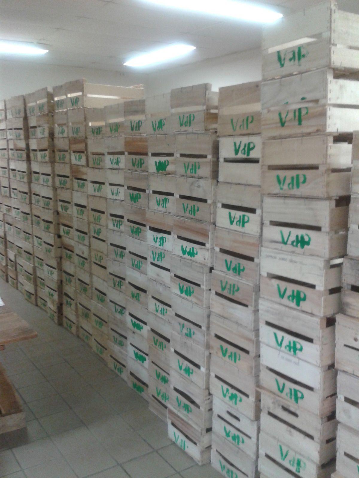 Stock renouvelé de cageots marqués Vdp