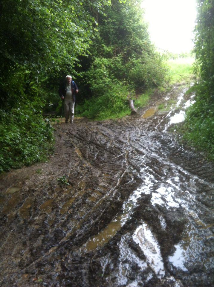 Lundi 26 mai 2014: Artiguelouve - Estialesq : 18 km