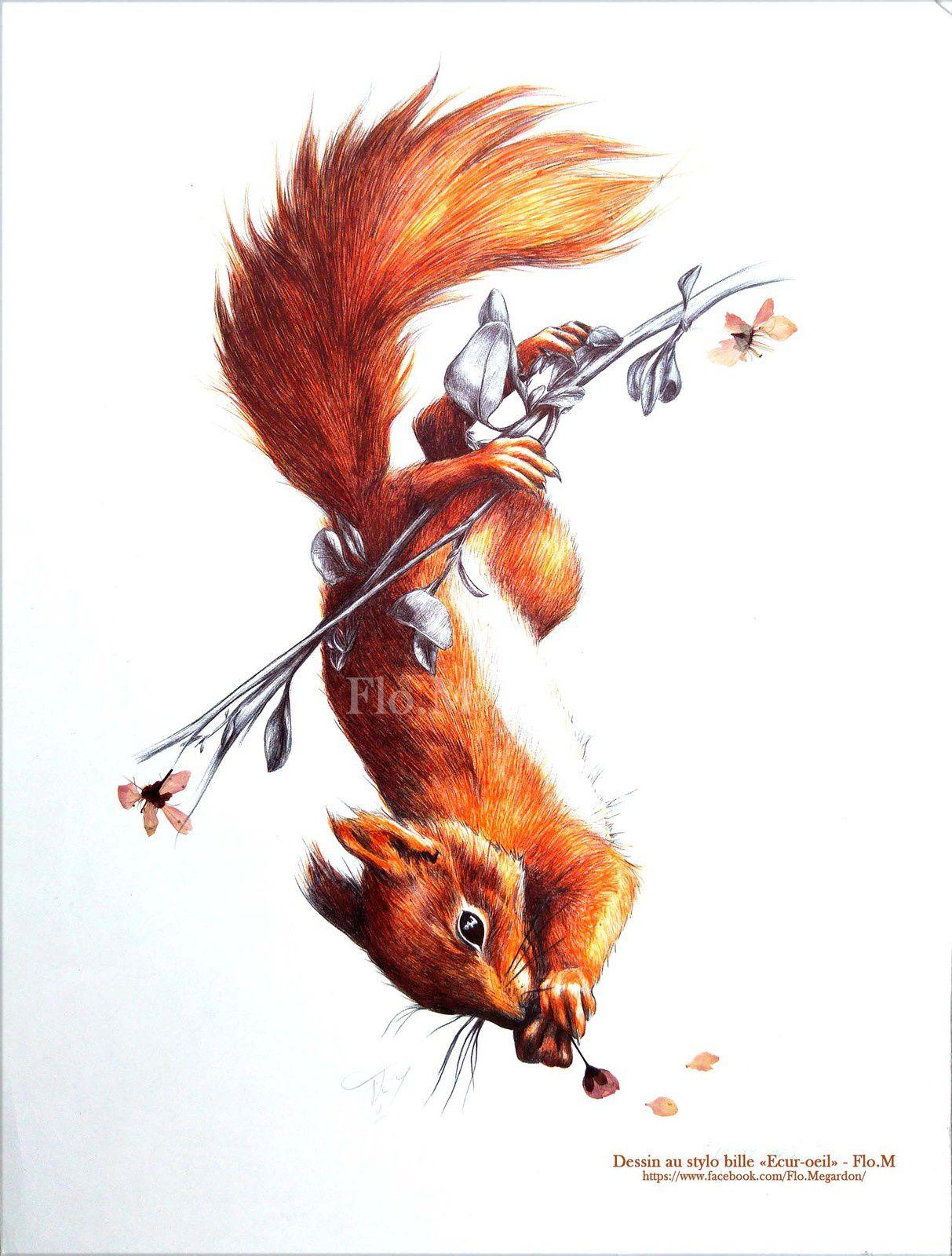 """Dessin écureuil au stylo bille : """"Ecur-oeil"""""""