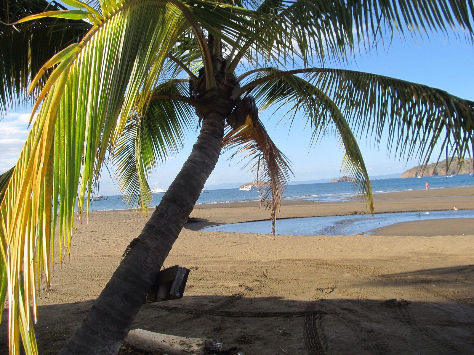 UN BON NOËL AVEC 39° A   EL  COCO  (golfe de papagayo)