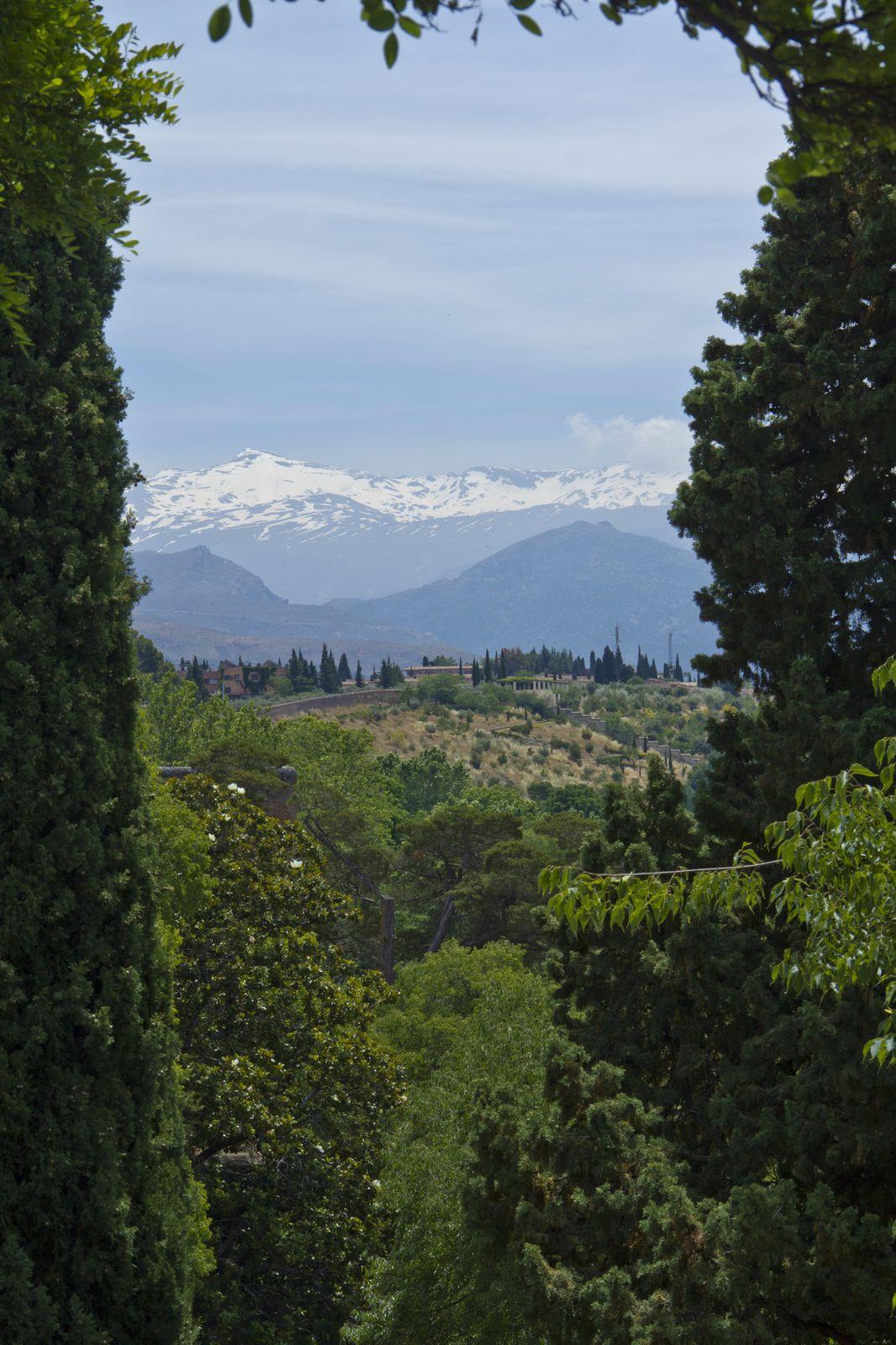 Différentes vues de l'Alcazaba, avec en arrière plan la ville de Grenade, la Sierra Nevada, le quartier de l'Albaicin.