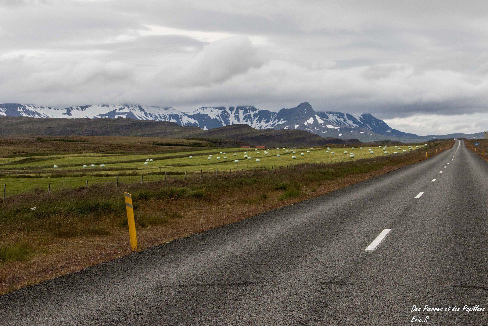 Route entre Hraunfossar  et Þingvellir