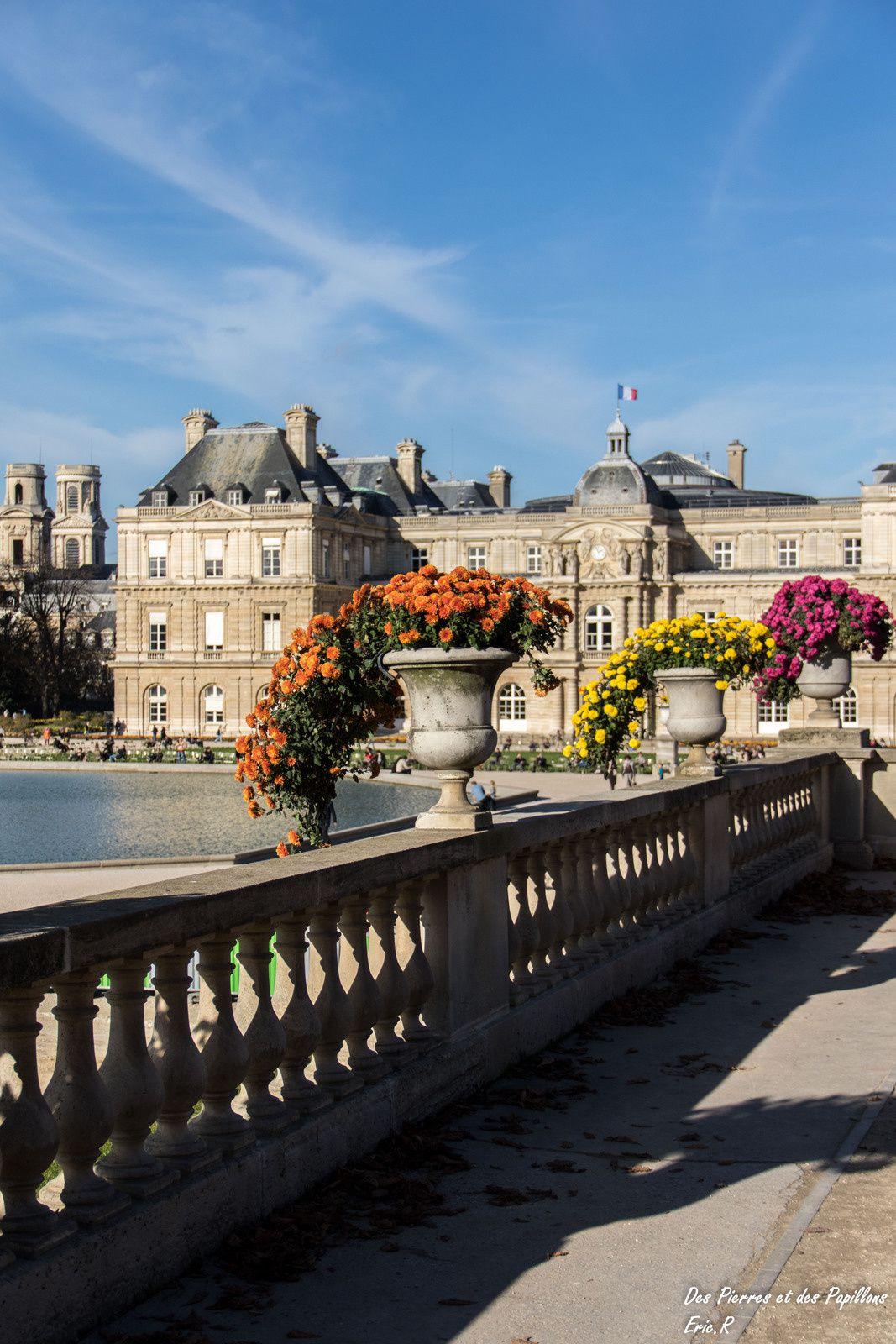 Vues du palais