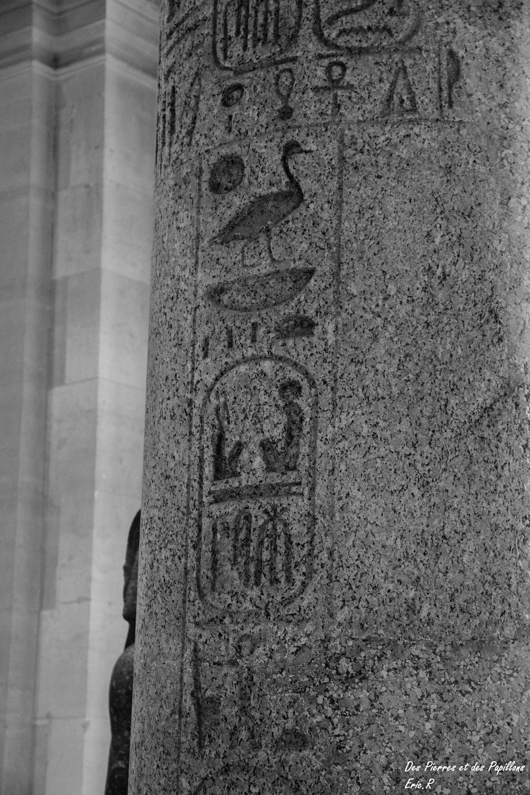 Tête de colosse d'Aménophis III - en granite - 1391/1353 av. JC  et colonne issue d'un temple.