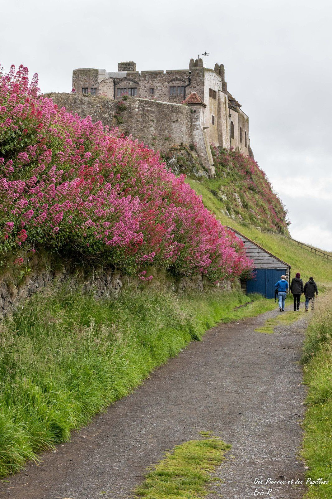 &quot&#x3B;Bamburgh Castle&quot&#x3B; et &quot&#x3B;Holy Island of Lindisfarne&quot&#x3B;.
