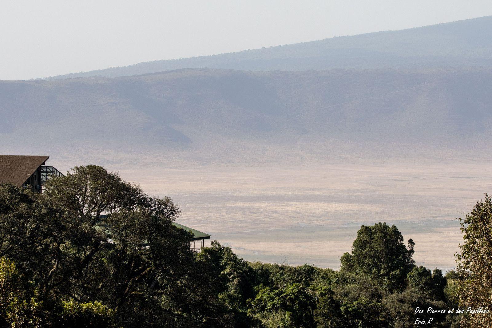 Le cratère du Ngorongoro.