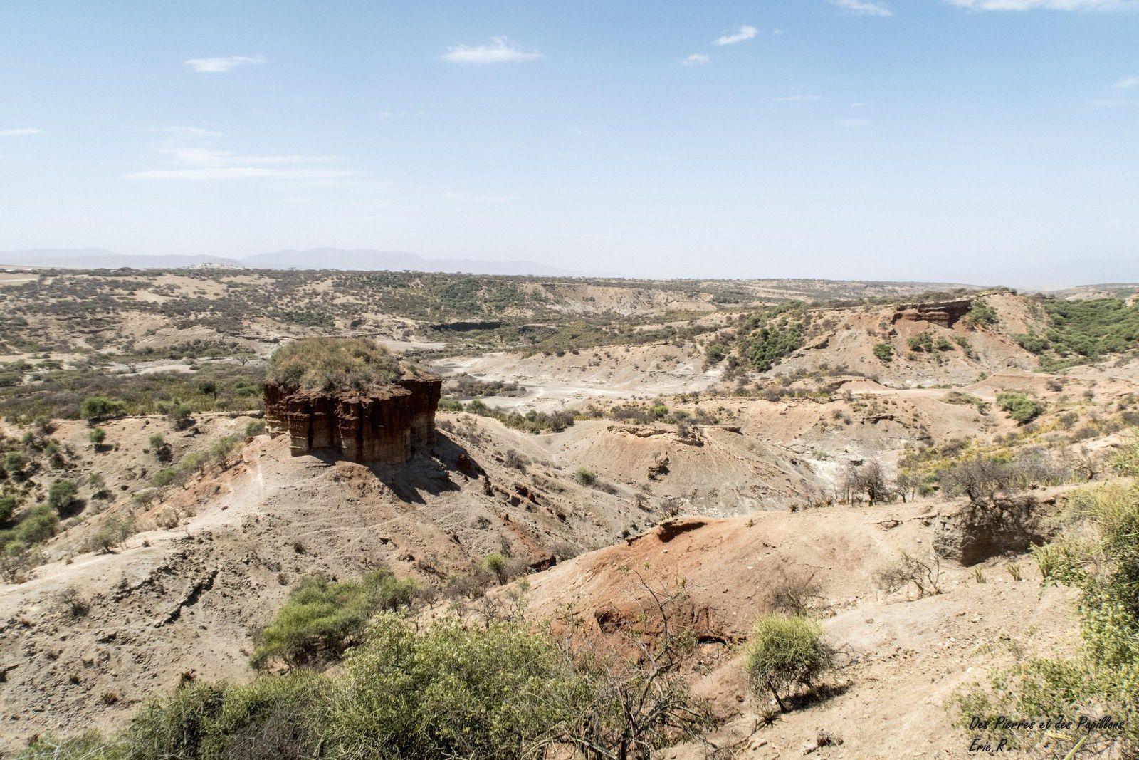 Le site et le musée d'Olduvaï