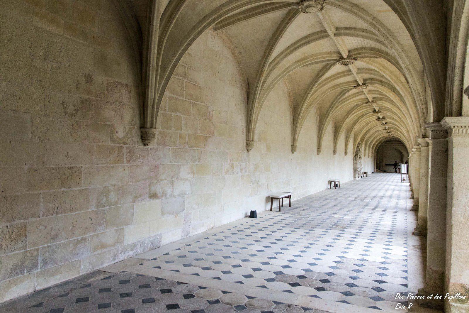 Visite à l'abbaye royale Notre-Dame de Fontevraud.