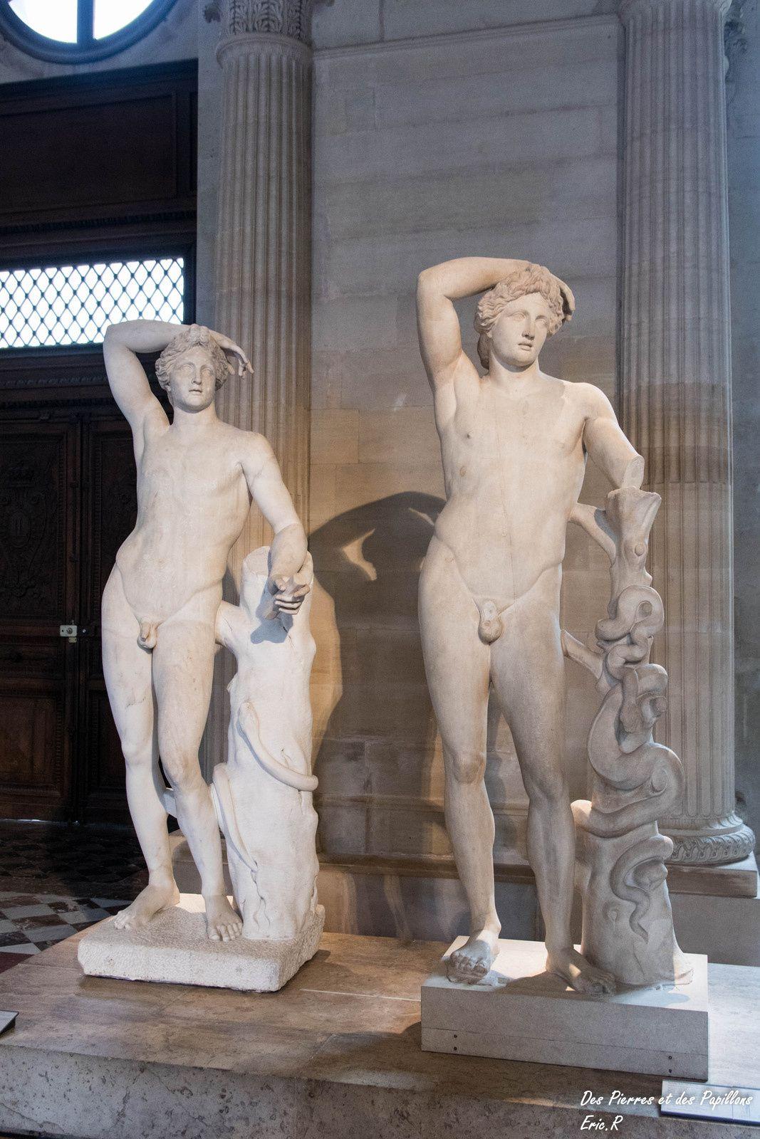 Apollons (?)