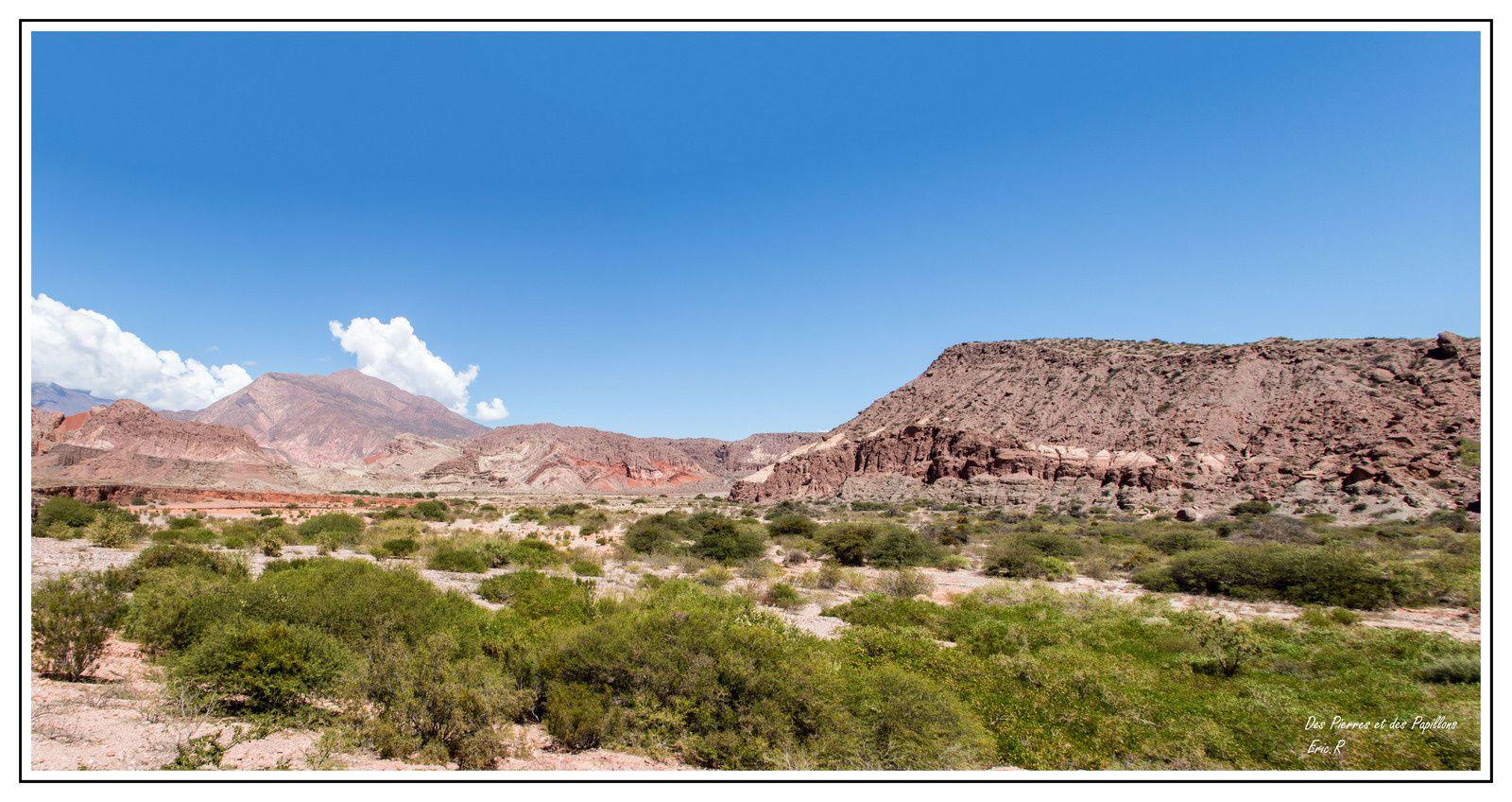 Un superbe voyage en Argentine !