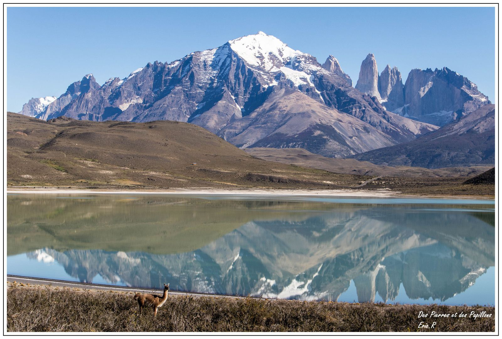 Patagonie : Parc national de Torres del Paine