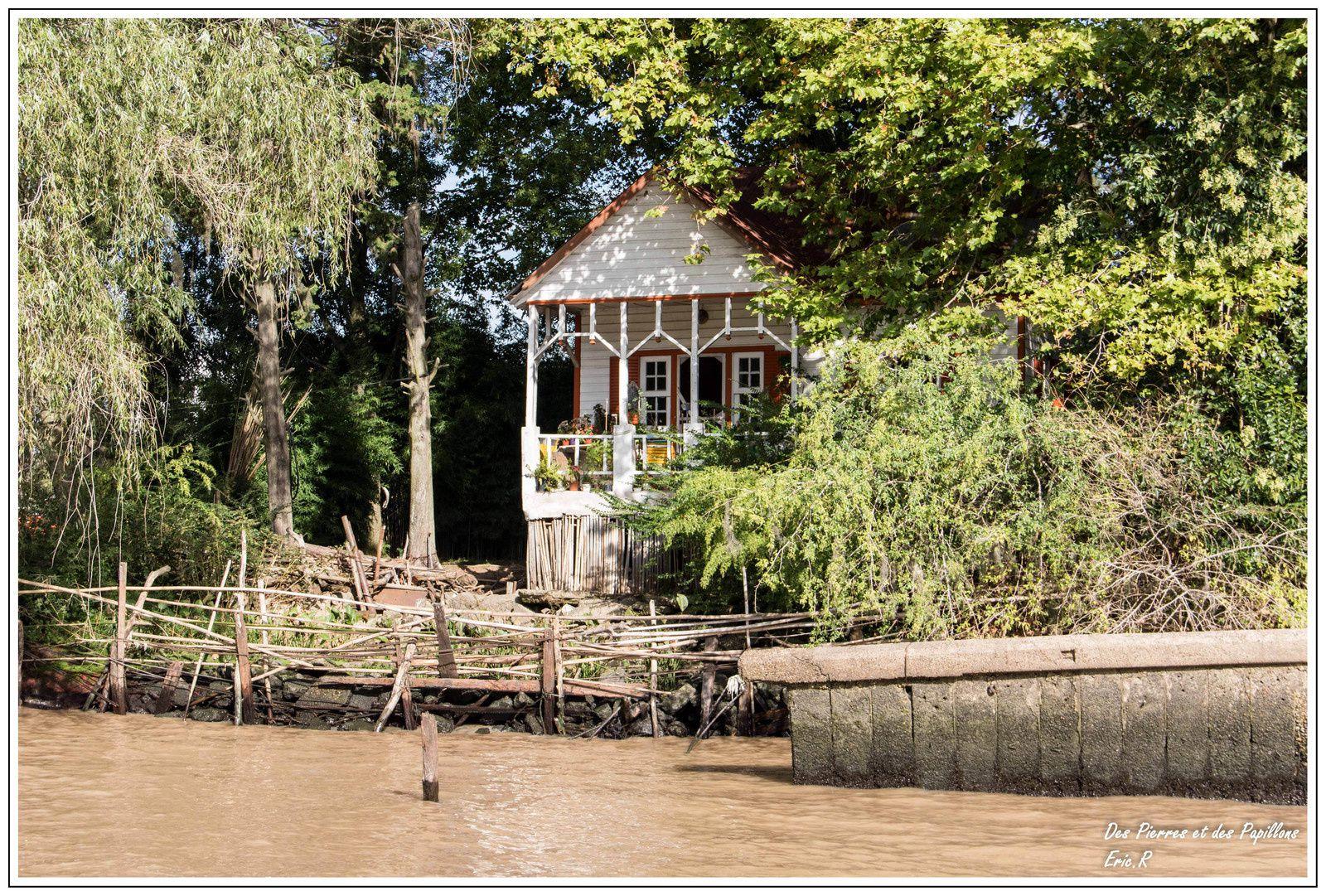 Les rivages du delta.