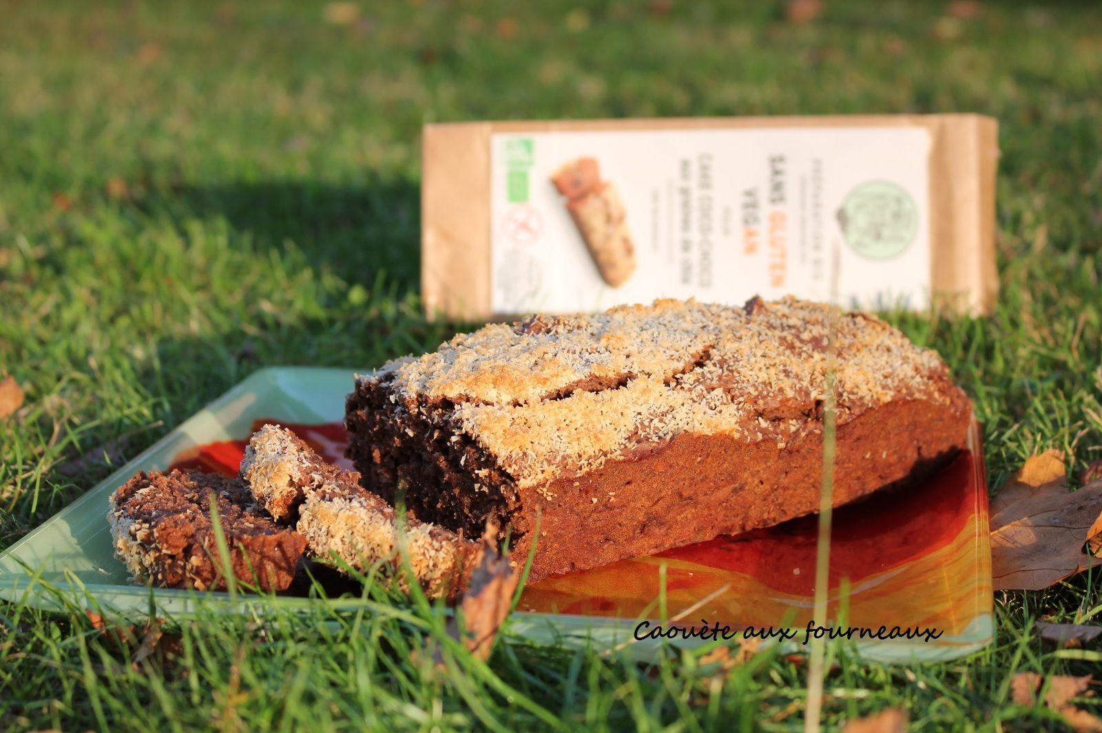 Cake coco-choco aux graines de chia {sans gluten - vegan}