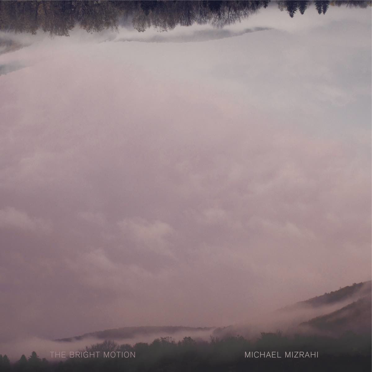 Michael Mizrahi - The Bright Motion