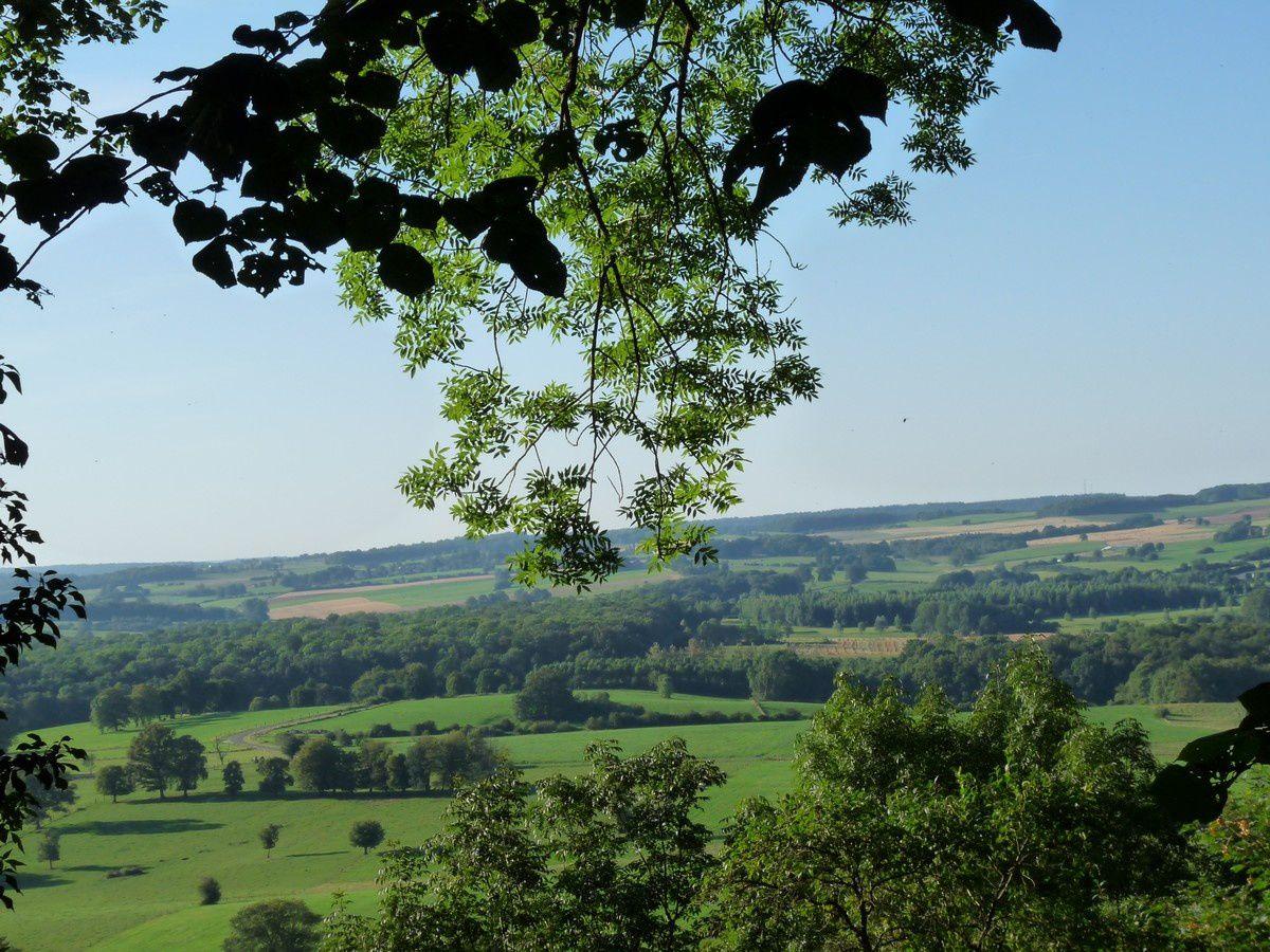 Omont (Ardennes)