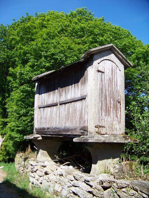 Camino primitivo : Lugo à Melide