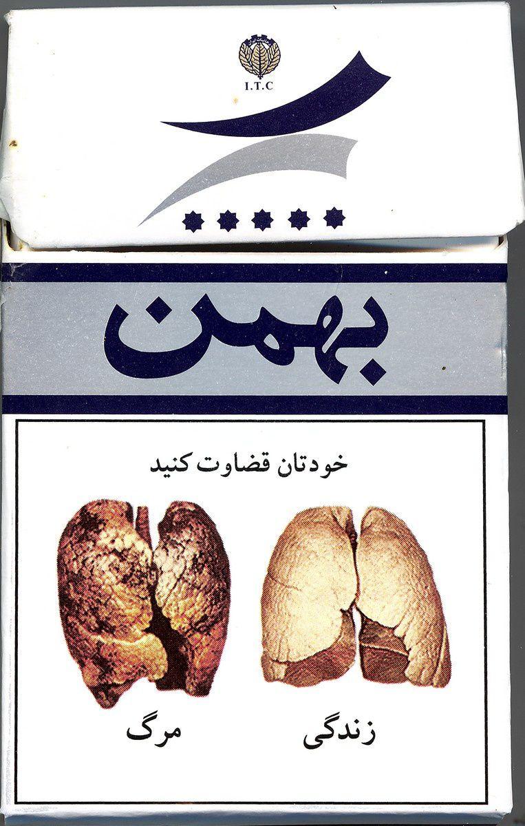 Poumons sains et poumons de fumeur