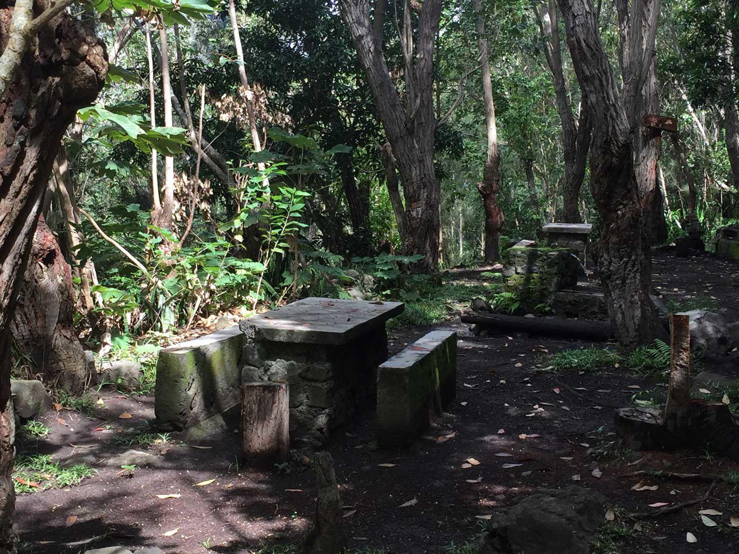 Un endroit secret de Cilaos : la ravine des Calumets...