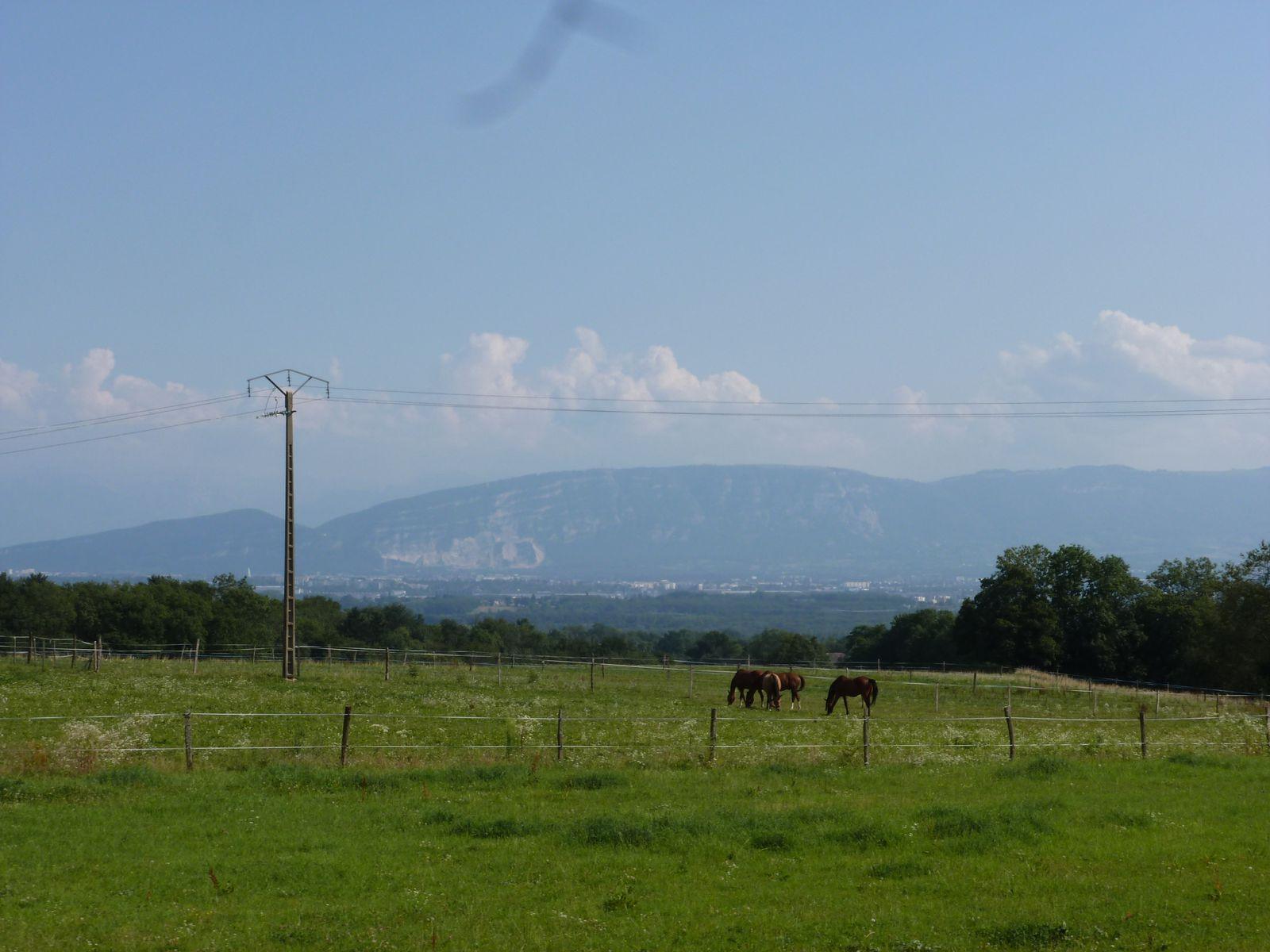 Le Mont Salève, vu depuis Echenevex... j'étais là-bas avant hier ! Et.. aujourd'hui aussi... mais en mode voiture/pique nique :)