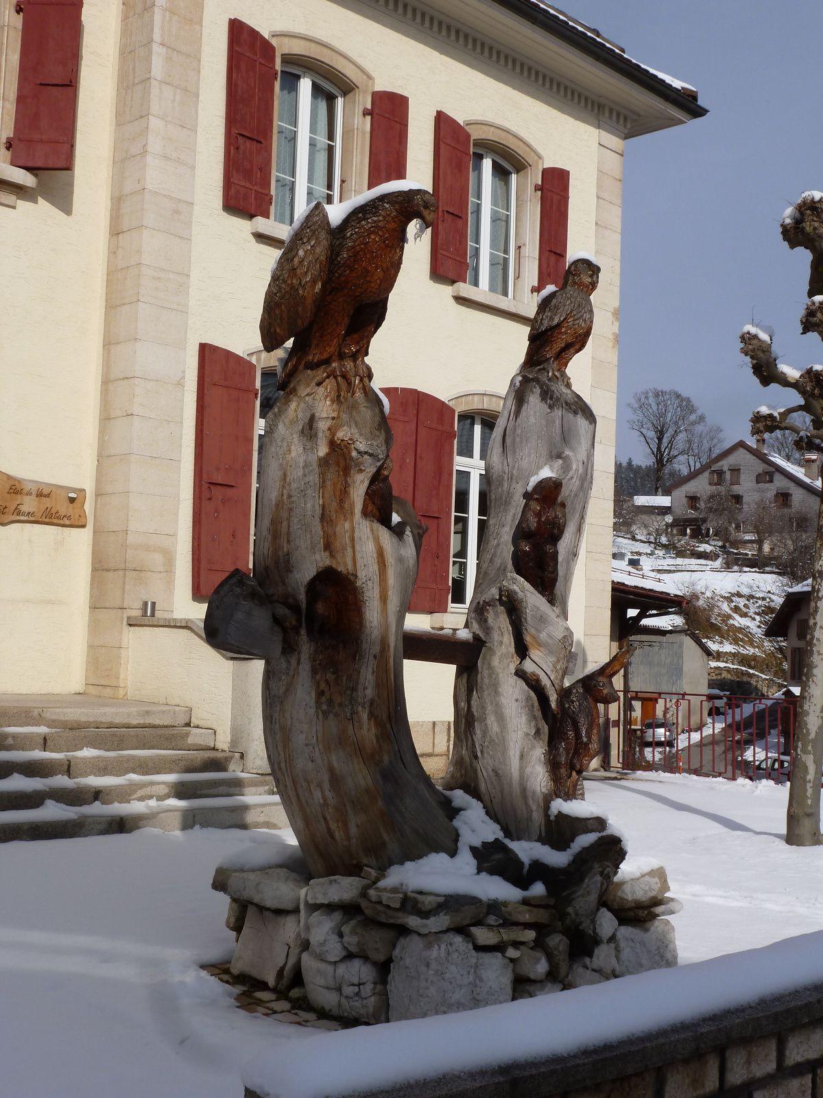 25 janvier 2014 - Collines Aubonne du lac