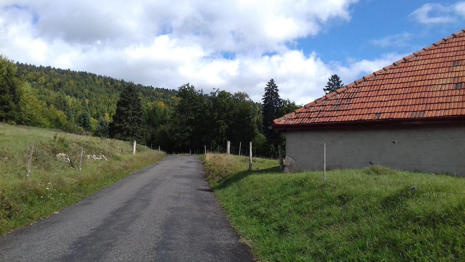 La route de la montagne, c'est son nom, qui m'emmène à la Combe des Amburnex.