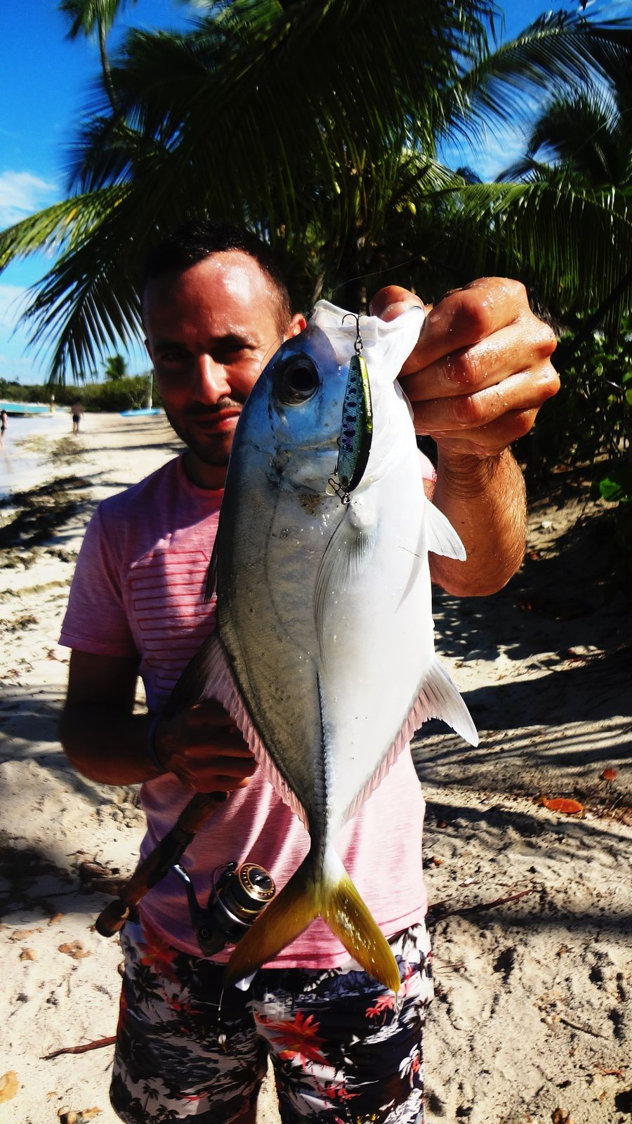 Rock-Fishing Bayahibe