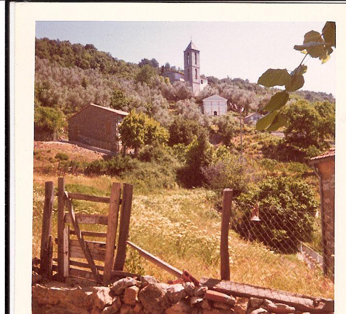Le terrain vu depuis la maison Franceschetti en juillet 1972 (photo Michèle Genêt)