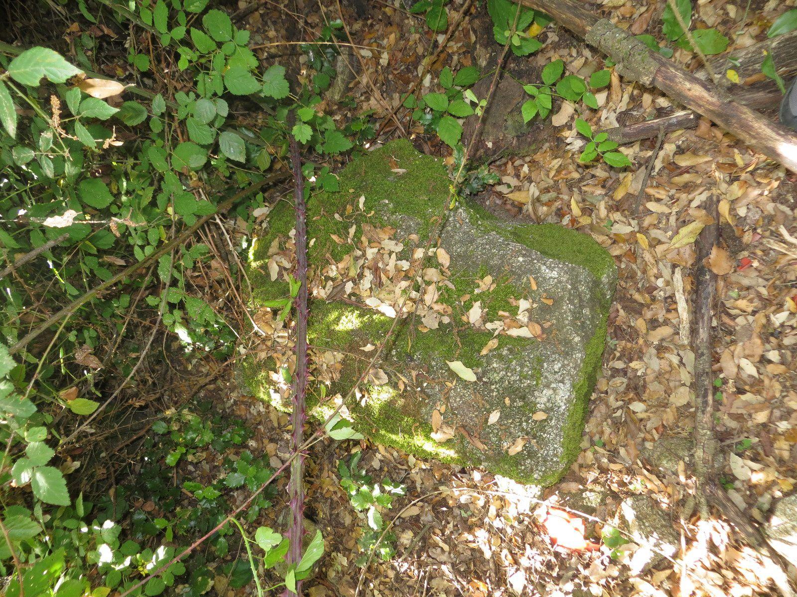 pierre vestige de Sant'Anarilla (site m3c.univ-corse.fr)