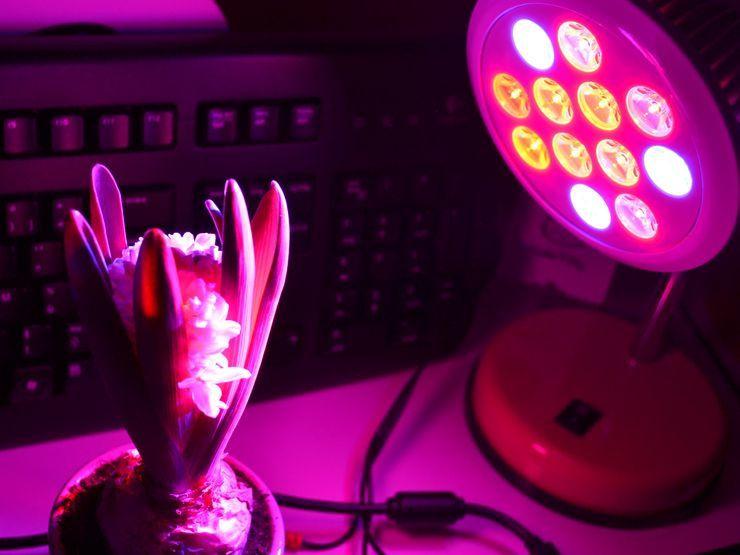 Lampe de croissance VICTSING , prenez soin de vos plantes !