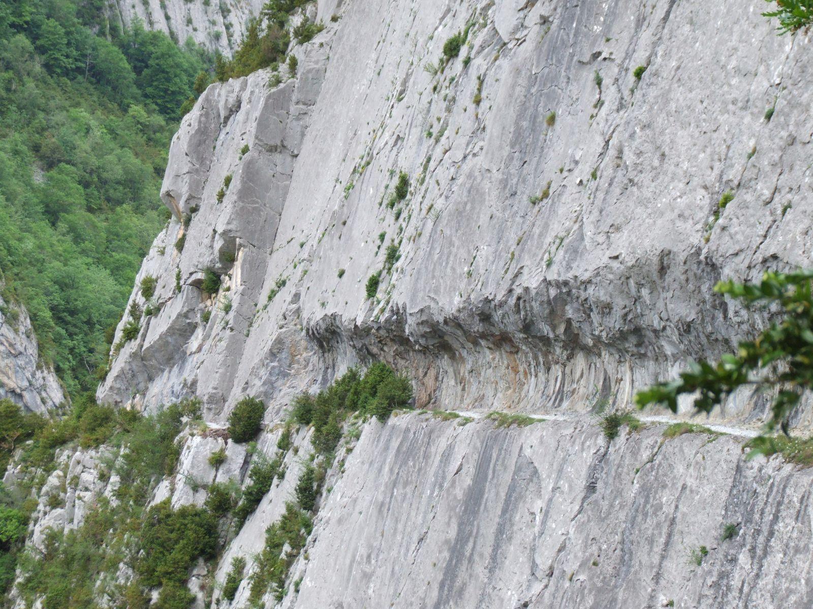 Le Chemin de la Mâture