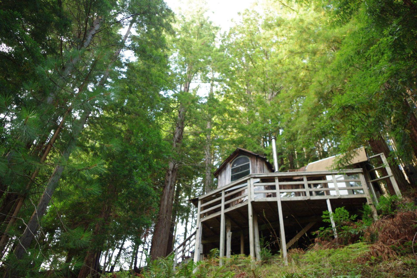 Salmon Creek , long history