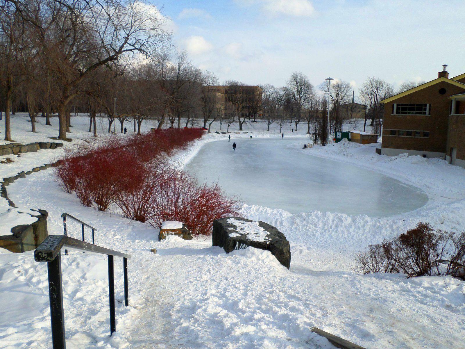 Le parc Lafontaine sous la neige