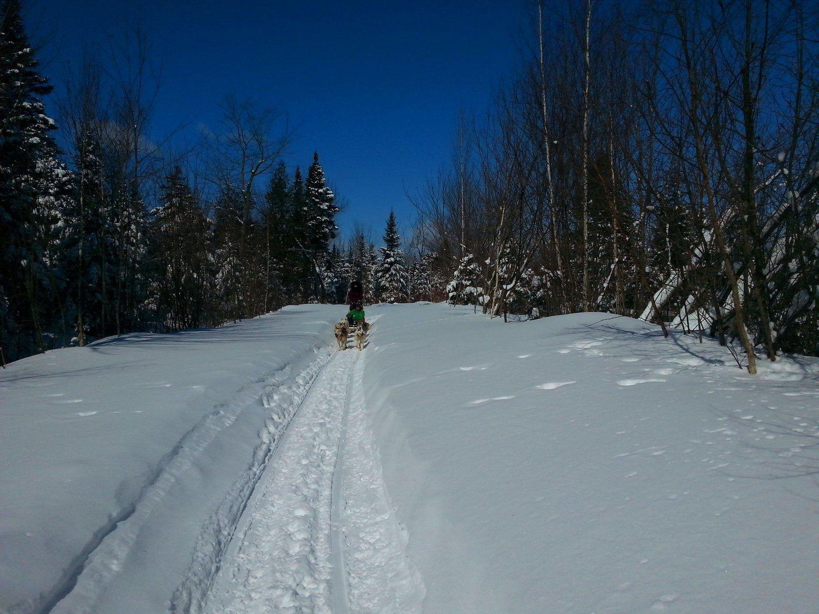 Ma Cabane Au Canada, Oui mais au bord des pistes !