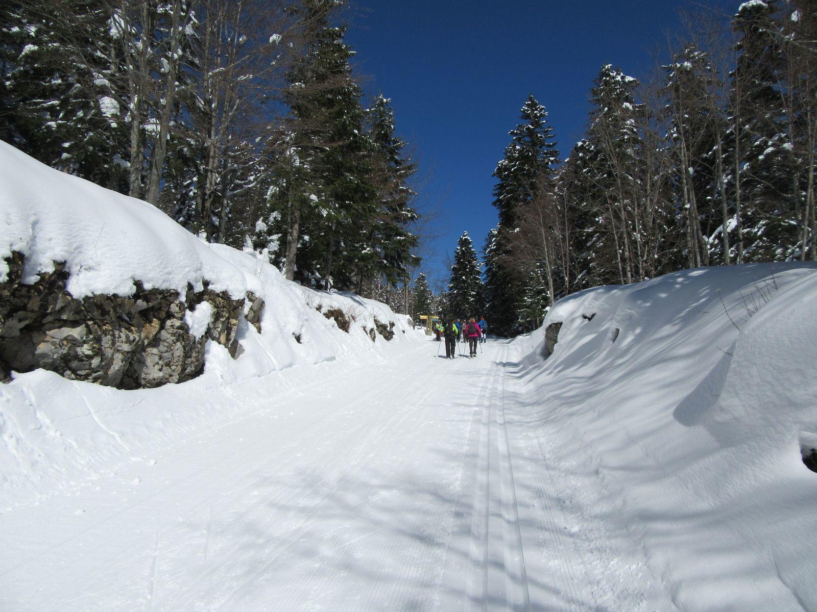 C'est parti pour Malaterre, la neige est bonne et les traces bien marquées.