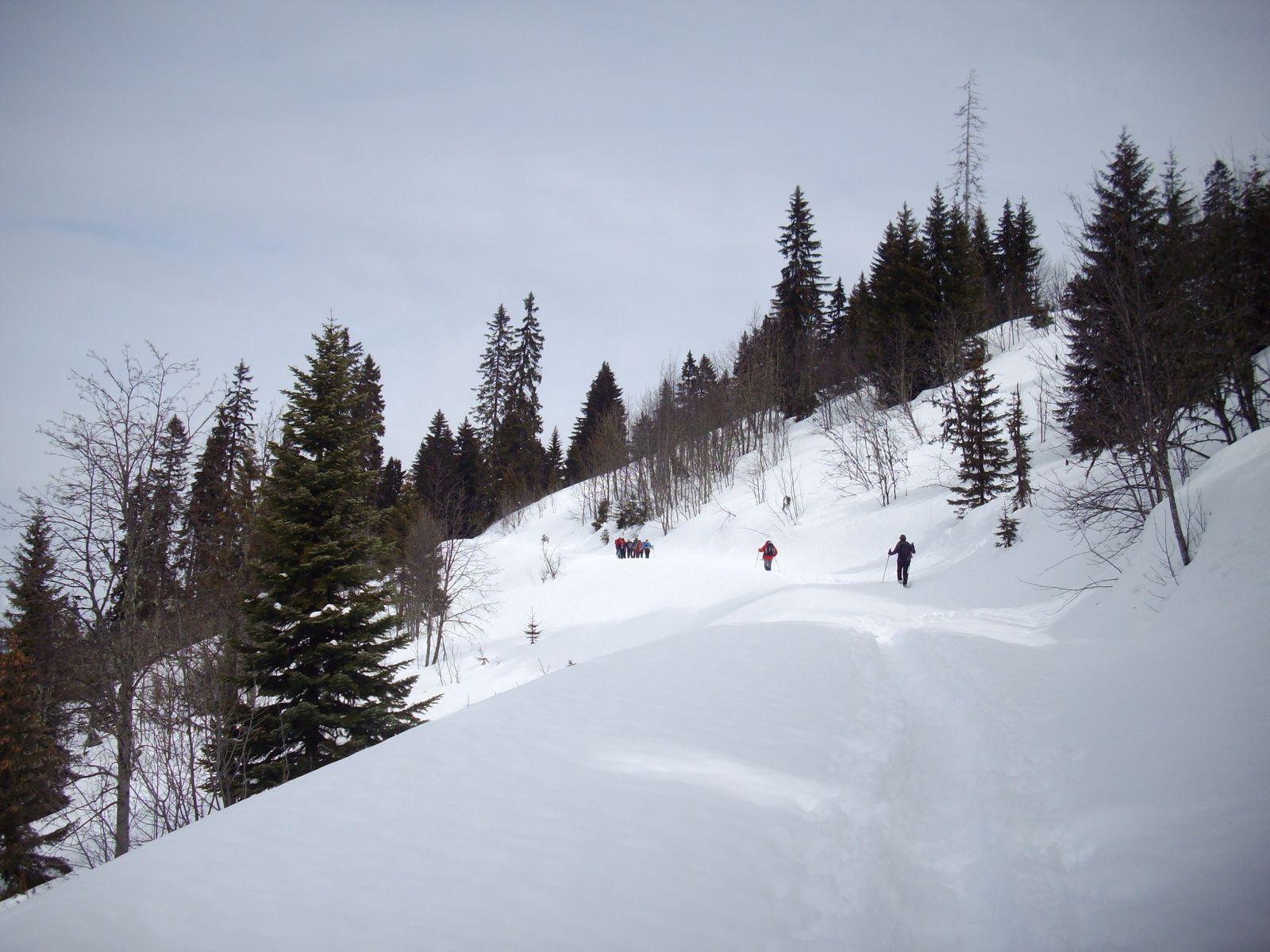 Des raquetteurs montent vers le Le Chard du Beurre d'autres vers le mont Bisanne