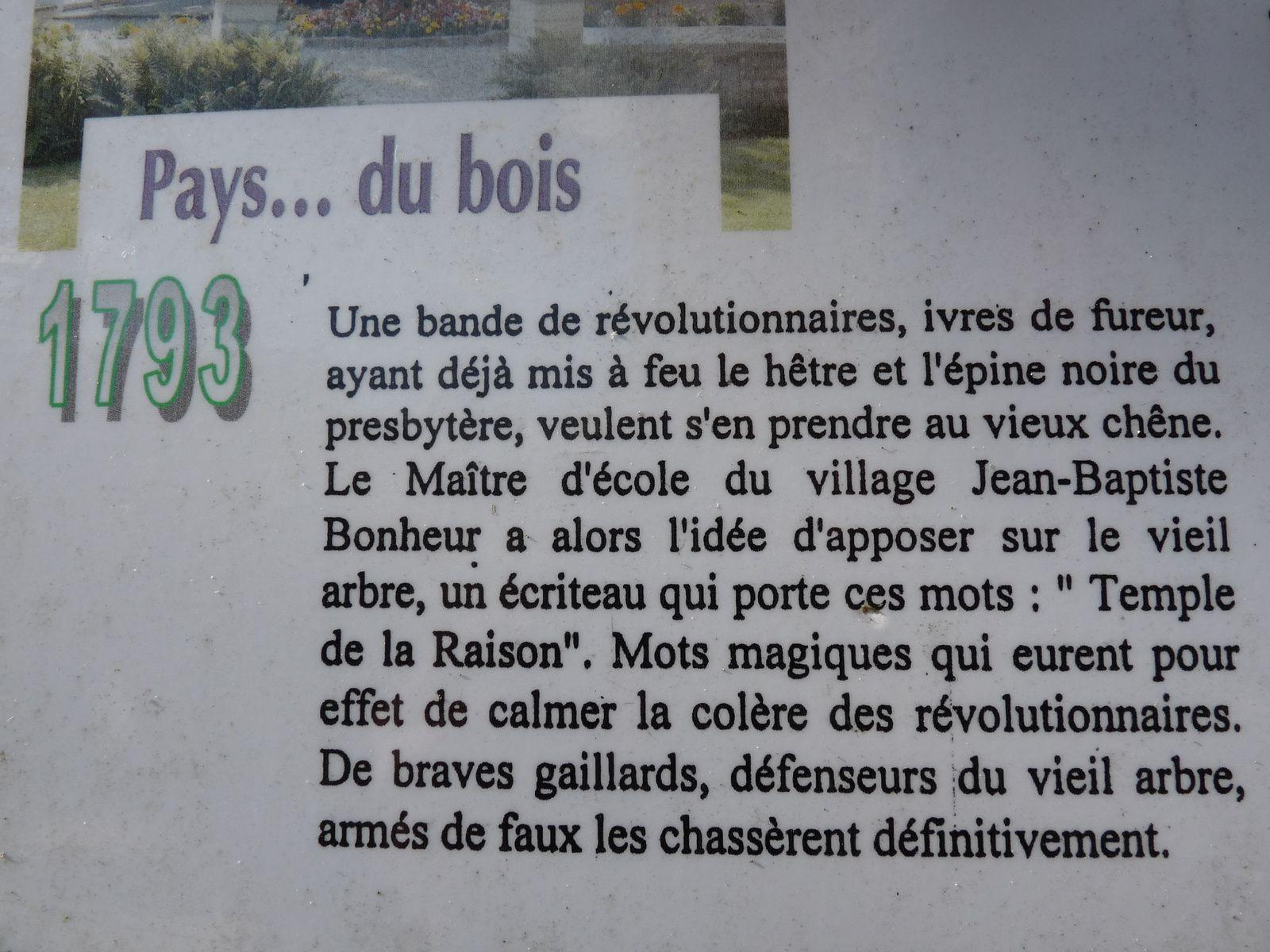 LE CHENE D'ALLOUVILLE (Normandie-Rouen)