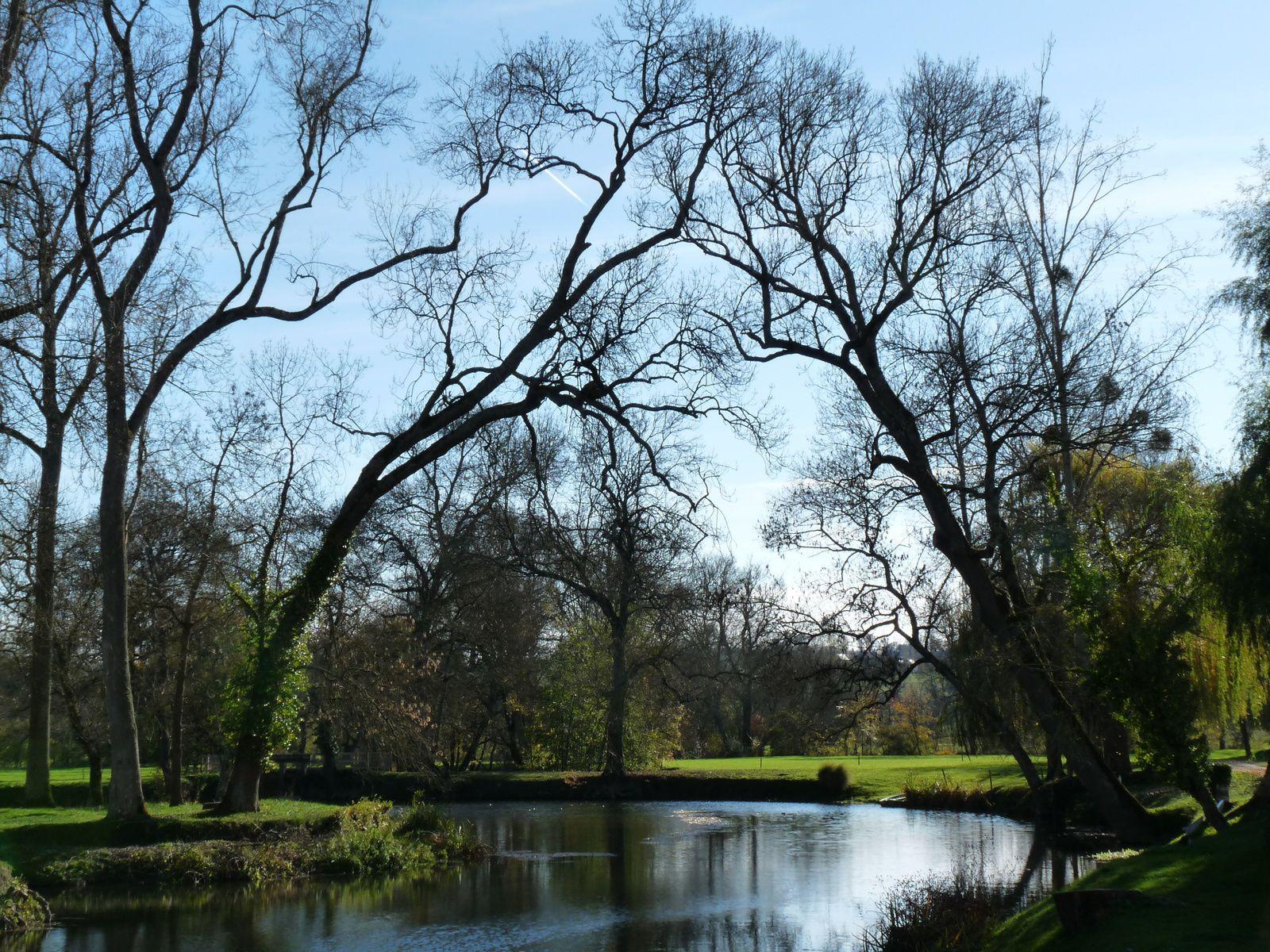 Couleurs automnales dans le parc du château de l'Islette (37)