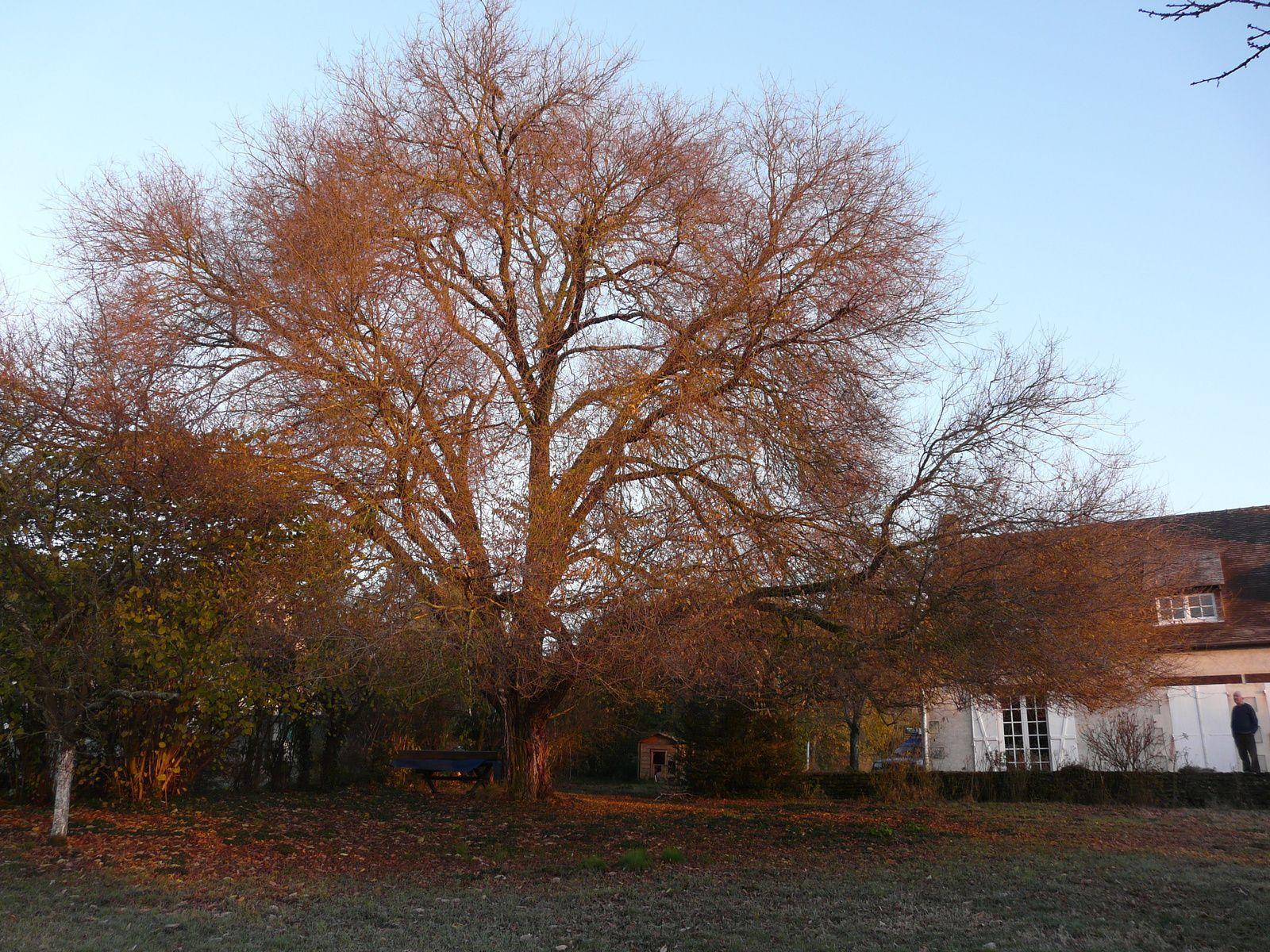 Eté, automne et hiver 2008.