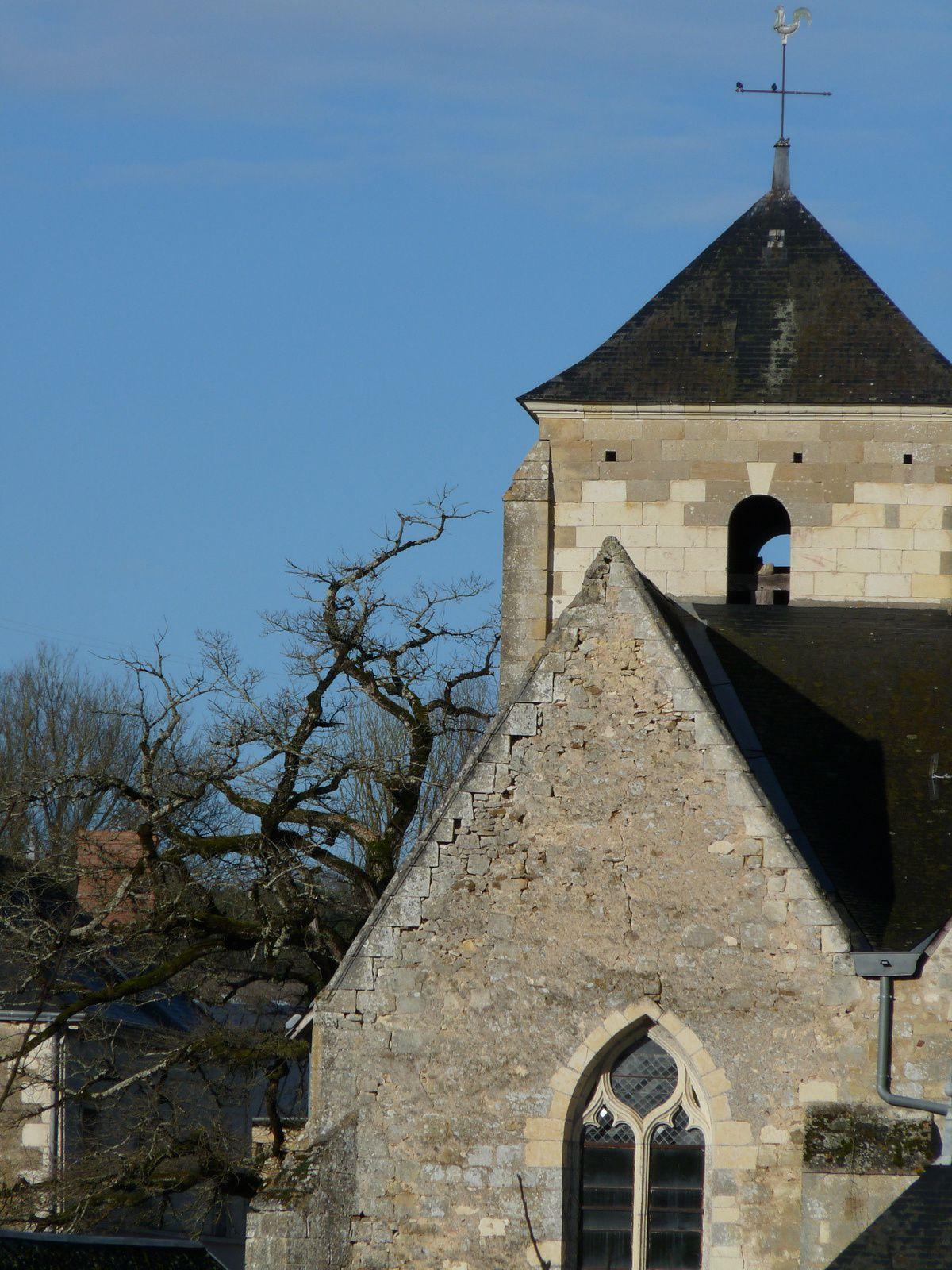 Le chêne de l'église de Cheillé  côté est .(37)