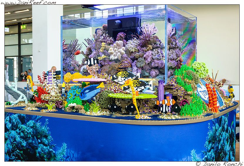 id e cadeau lego reefscape aquarium club evian. Black Bedroom Furniture Sets. Home Design Ideas